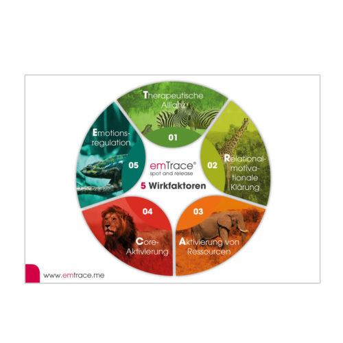 Pocketcard Wirkfaktoren-Checkliste